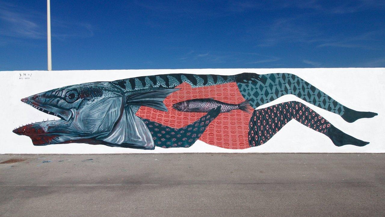 Speci Migranti #2 | Vedo a colori, Civitanova Marche: un muro di Nicola Alessandrini e Lisa Gelli